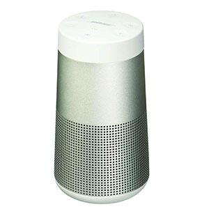 BOSE SOUNDLINK REVOLVE PLUS GRY 230V EUA